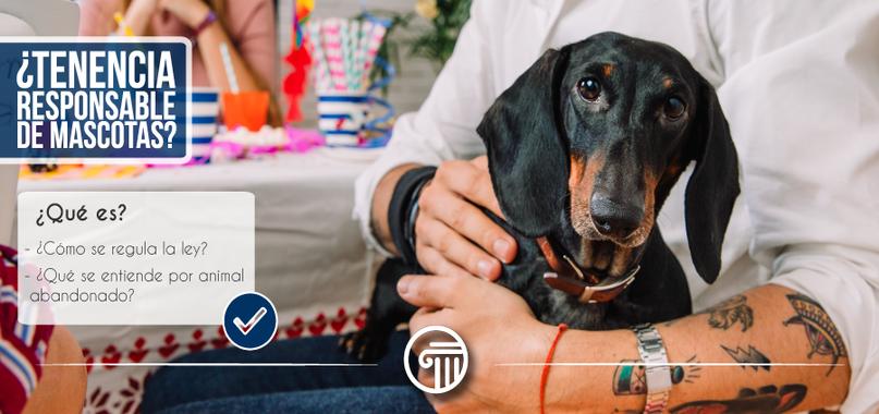 Ley tenencia responsable mascotas