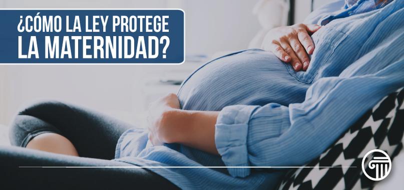 proteccion maternidad